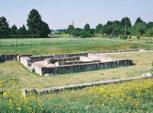 Argentomagus